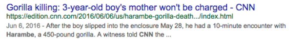 Harambe Google search result